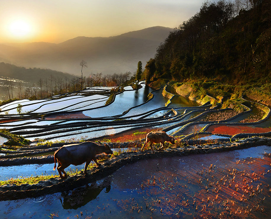 asia-travel-photography-weerapong-chaipuck-10